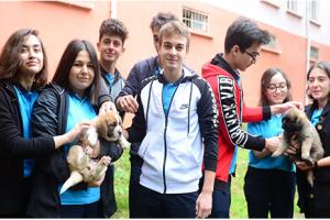 Okullarda Hayvan Sevgisi Büyüyor