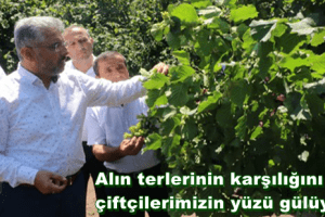 """Başkan Ersan Aksu: """"Fındık Üreticisinin Yüzü Gülüyor"""""""