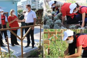 Atakum Belediyesi  AtaTohum'da İlk Üretim Tamamlandı