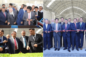 Bafra'ya Tarım Yatırımı