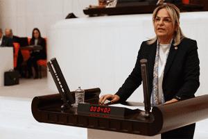 Hancıoğlu, Bankacılık Sektöründeki Yabancılaşmaya Dikkat Çekti