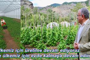 Tarım Üreticilerine Destek