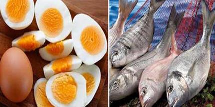 Yumurta ve Balıkta KDV İndirimi