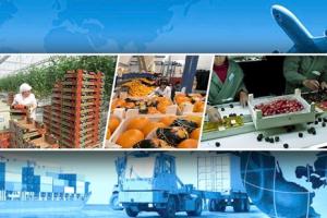 Tarım Ürünleri İhracatı Kovid-19'a Rağmen Arttı
