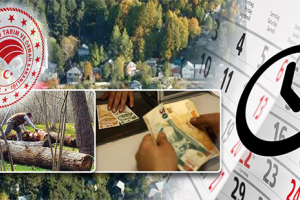 Orman Köylüleri ve Kooperatiflerinin Kredi Taksitleri Ertelendi