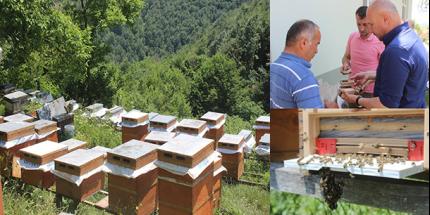 Tekkeköy Belediyesi'nden Çiftçiye Destek