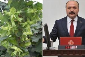 Milletvekili Erhan Usta, Bakan Pakdemirli'ye Fındık Fiyatını Sordu