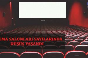 Sinema Salonlarının Sayısı Düşüyor