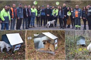 Ayvacık Belediyesi ve OMÜ İşbirliği İle Sokak Hayvanlarına Kulübe ve Mama