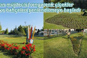 Samsun'da 530 Bin Çiçek Toprakla Buluştu