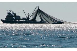 Denizlerde Avlanma Yasağı Başlıyor