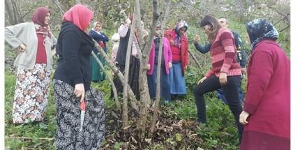 Karadenizli Kadınlar Fındıkta Kaliteyi Zirveye Çıkaracaklar