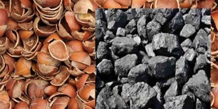 Fındık Kabuğundan Mangal Kömürü Üretilecek
