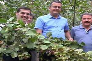 Örnek Bahçelerde Verim Üreticilerin Yüzünü Güldürüyor