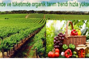 Organik Tarımda Üretim Arttı