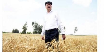 """TZOB Başkanı Bayraktar, """" Buğdayda Servet Kaybediyoruz"""""""