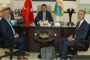 Başkan Erdoğan Tok'tan Anadolu ve Zeytinlik Mahallelerine Müjde