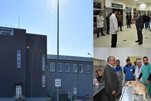 OMÜ Hayvan Hastanesi 7 Gün 24 Saat Acil Hizmete Başladı