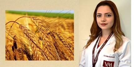 Neden Tam Buğday Tüketmeliyiz?