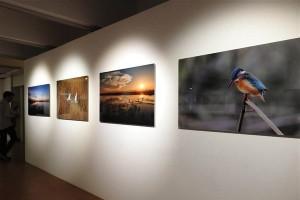 Kuş Cenneti, Unesco'nun Paris'teki Merkezinde Tanıtıldı